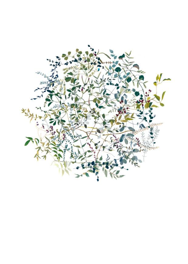 microcambios